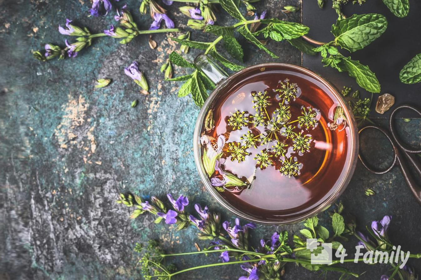 Как приготовить вкусный и полезный травяной чай