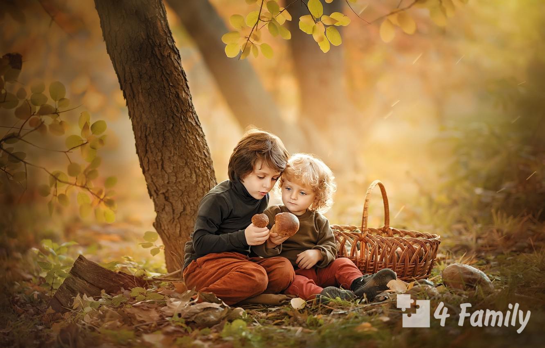 Фото. Можно ли давать детям грибы