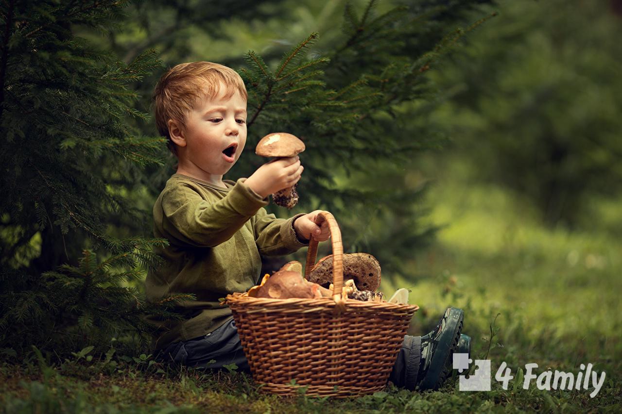 Можно ли давать детям грибы