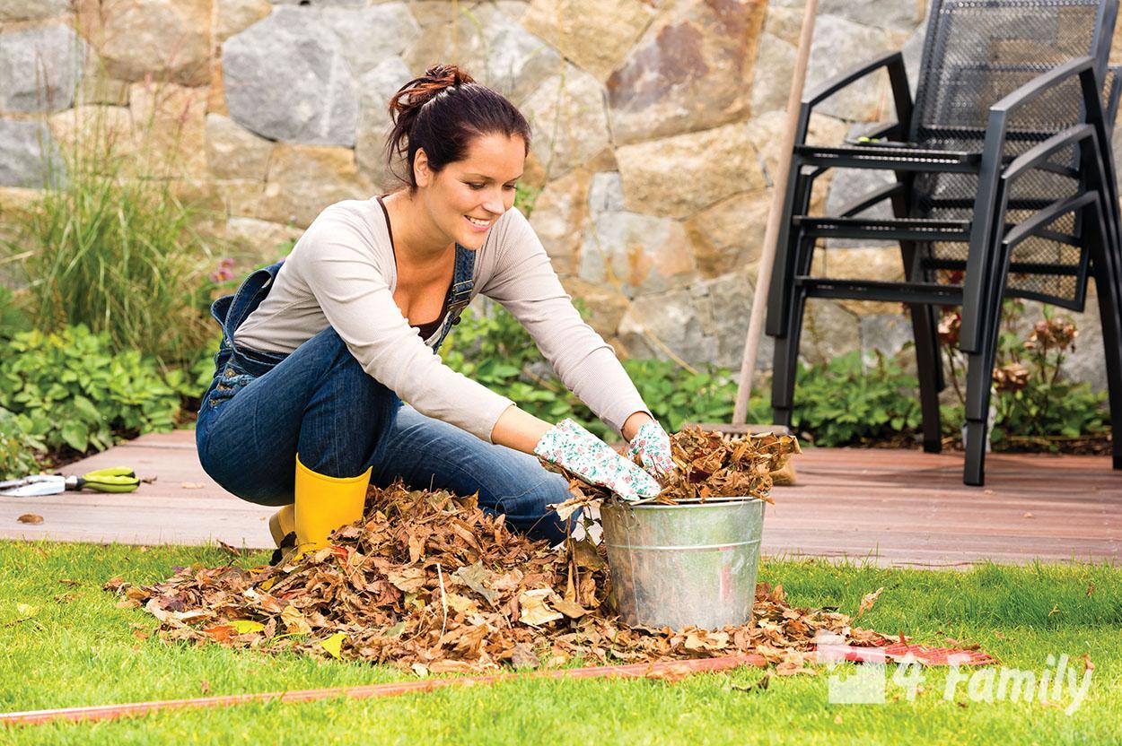 Важные вещи, которые нужно сделать в саду перед началом зимы