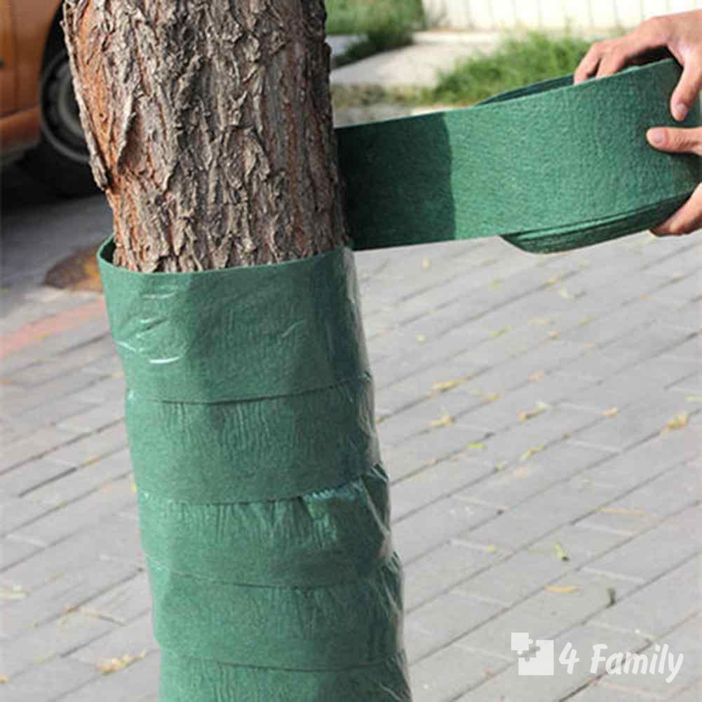 Фото. Важные вещи, которые нужно сделать в саду перед началом зимы