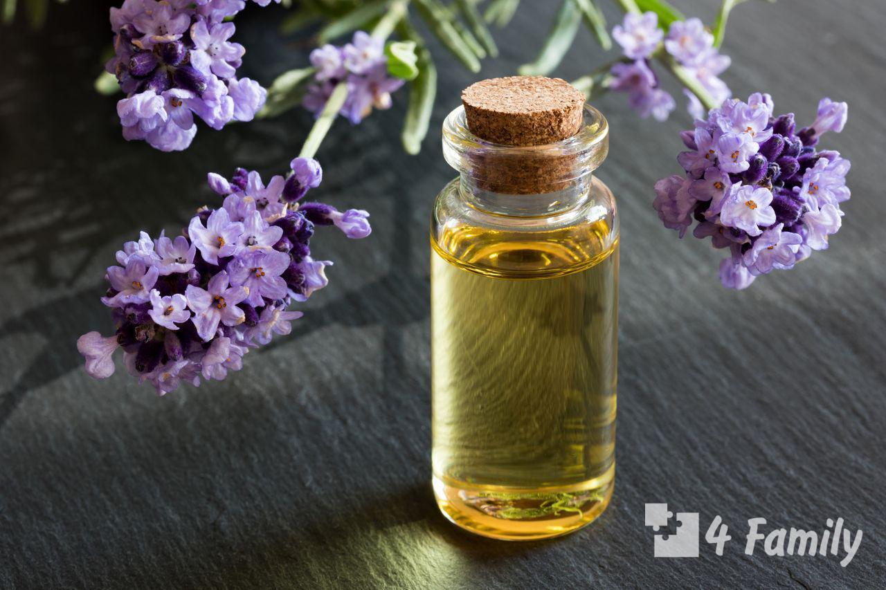 Фото. Полезные свойства эфирного масла лаванды