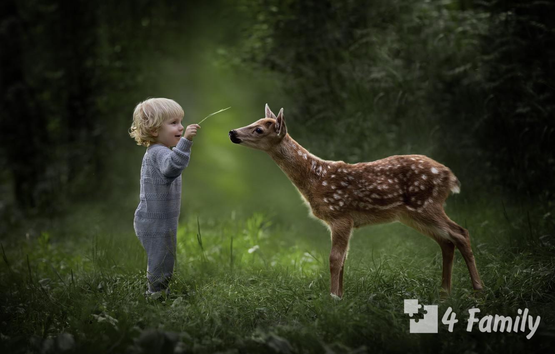 4family Как научить ребенка бережному отношению к природе