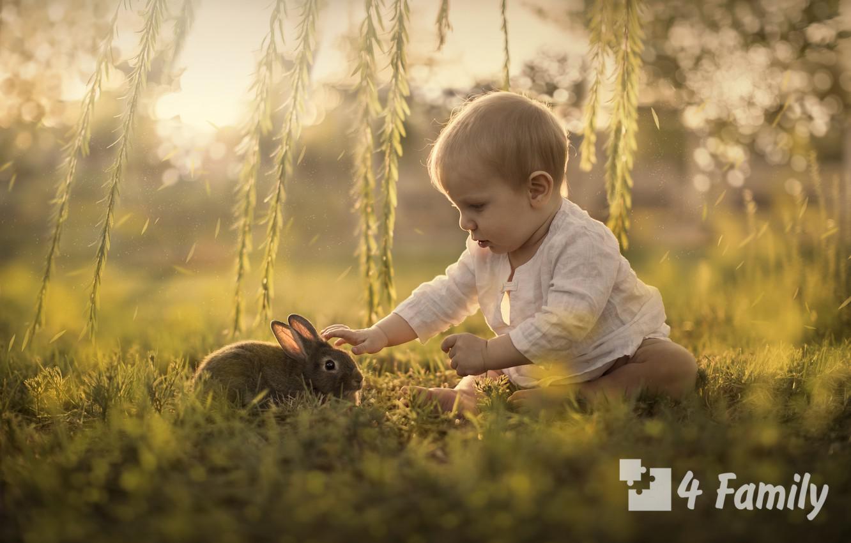Как научить ребенка бережному отношению к природе