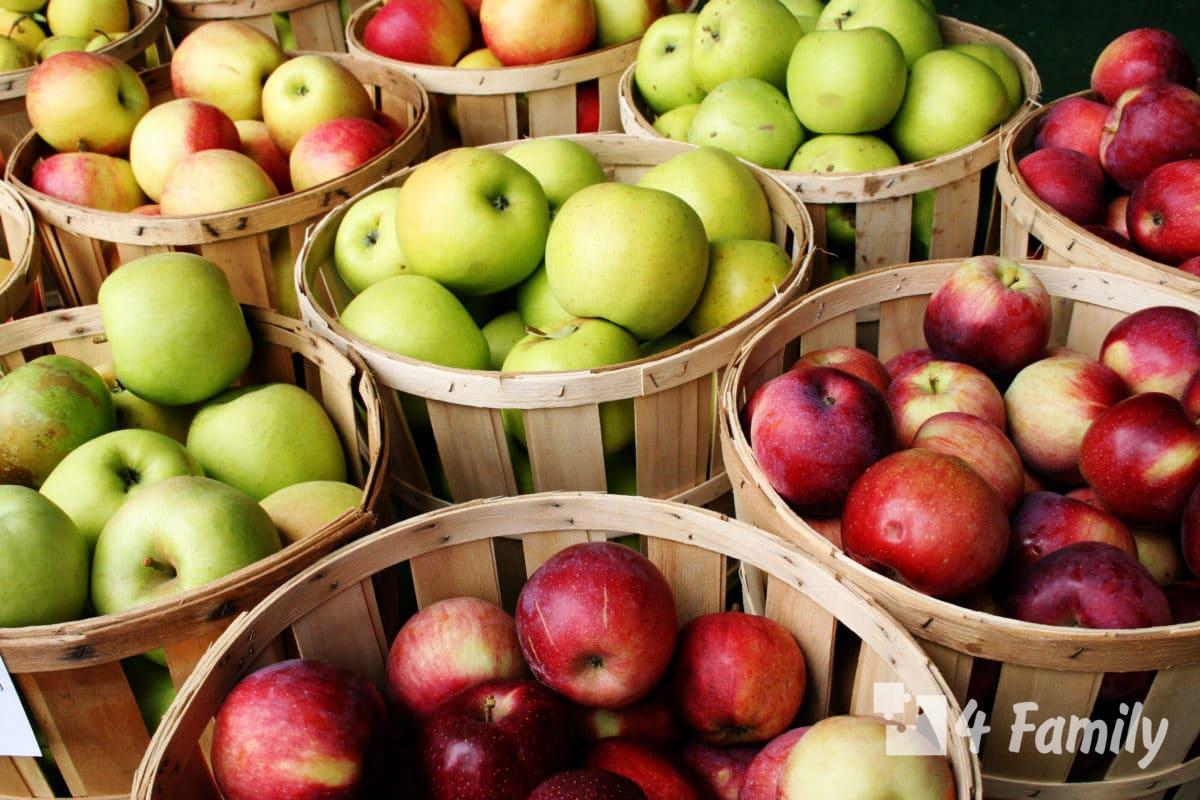 4family Как правильно хранить сезонные фрукты и ягоды летом