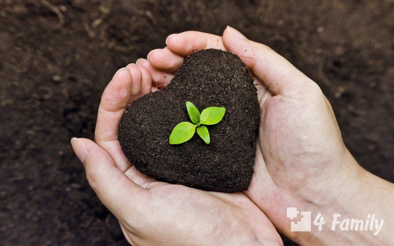 Как сделать органические удобрения своими руками