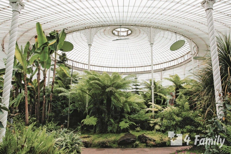 4family Ботанический сад в Глазго