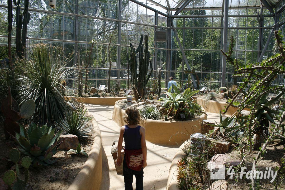 Ботанический сад Амстердама