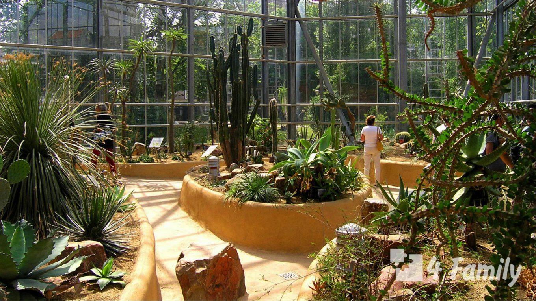 4family Ботанический сад Амстердама