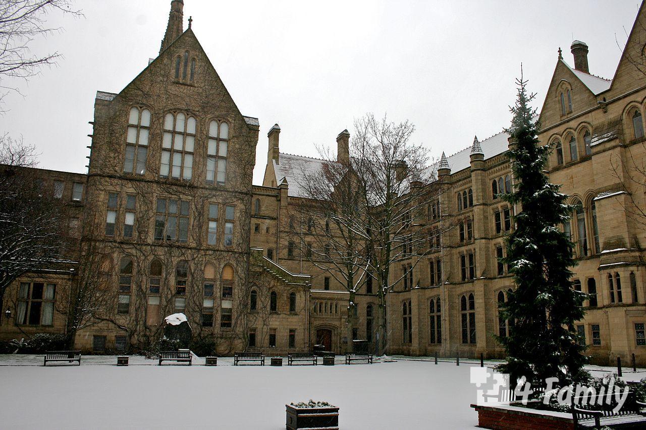 4family Манчестерский университет в великобритании
