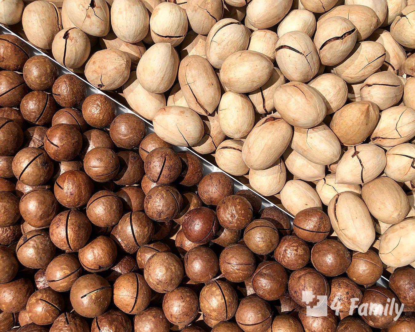 Полезные свойства орехов разного вида для организма человека