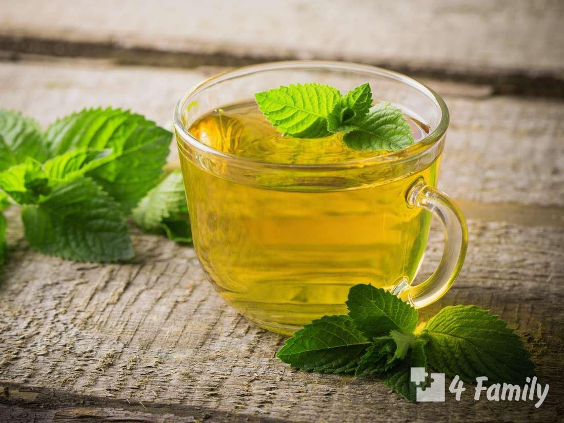 Бергамот чай: полезные свойства и противопоказания