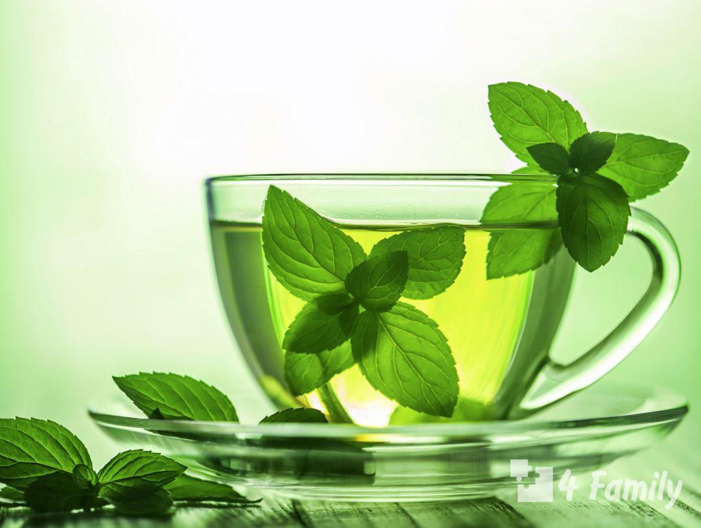 Выбираем правильный напиток: чай с мятой, полезные свойства и противопоказания