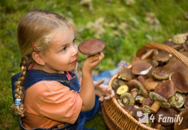 Поход за грибами с ребенком