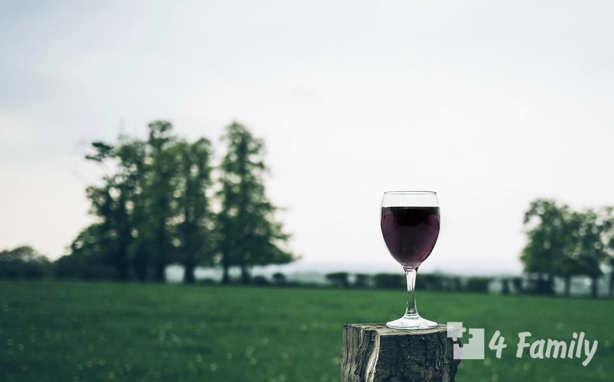 4family Вино из голубики в домашних условиях