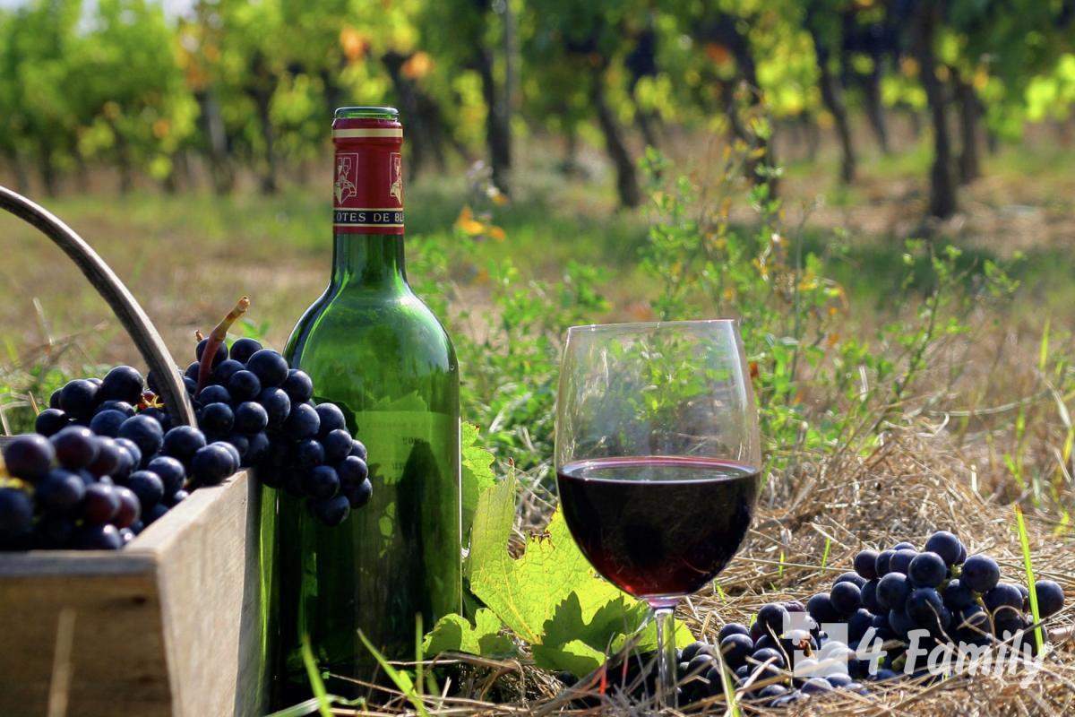4family Как пить вино Бордо