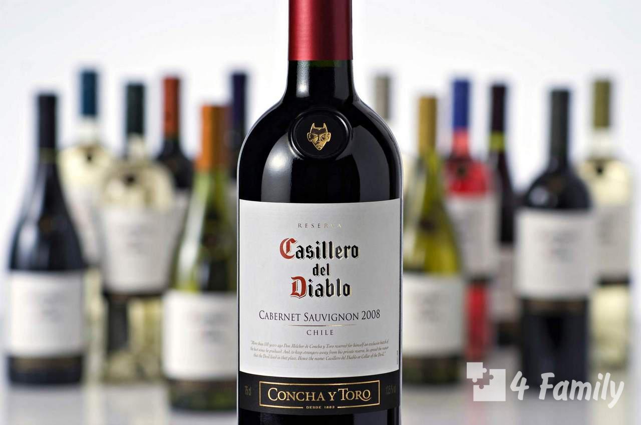 Как выбирать чилийское вино
