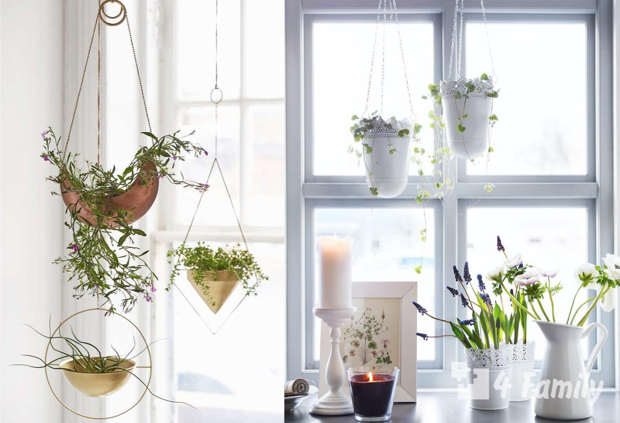 Стильные подвесные горшки для цветов своими руками
