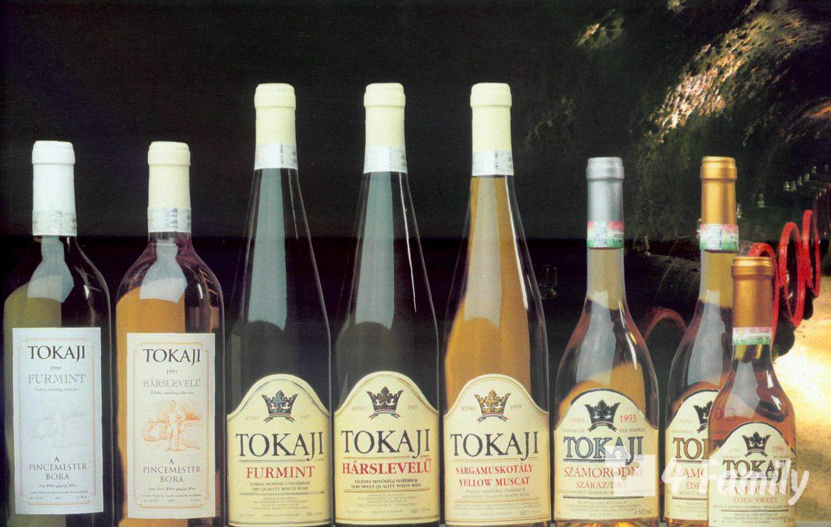 4family Как выбрать венгерское вино