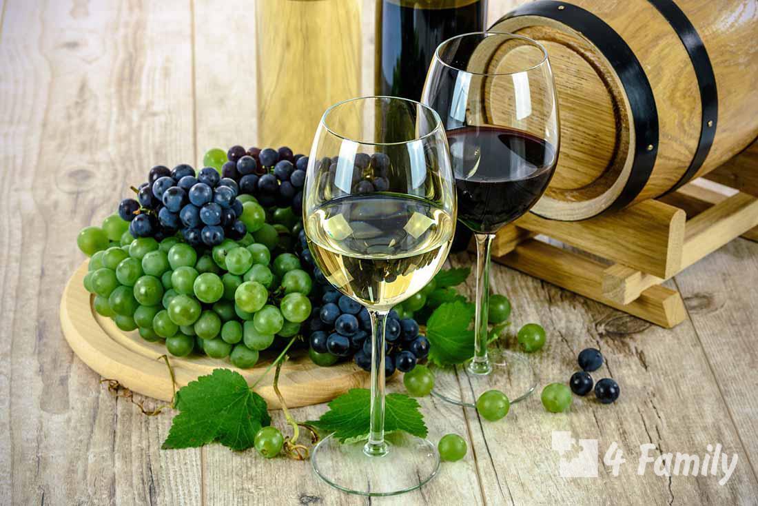 4family Как выбрать столовое вино