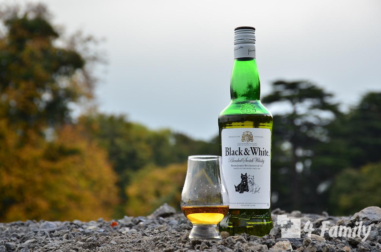 Как пить виски Блэк Вайт