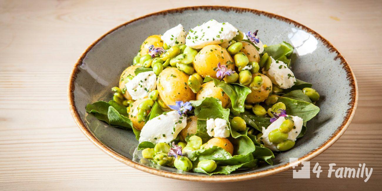 4family Какой салат можно приготовить из щавеля