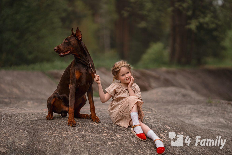 4family Животные, которые ведут себя точно как люди, но с лапами