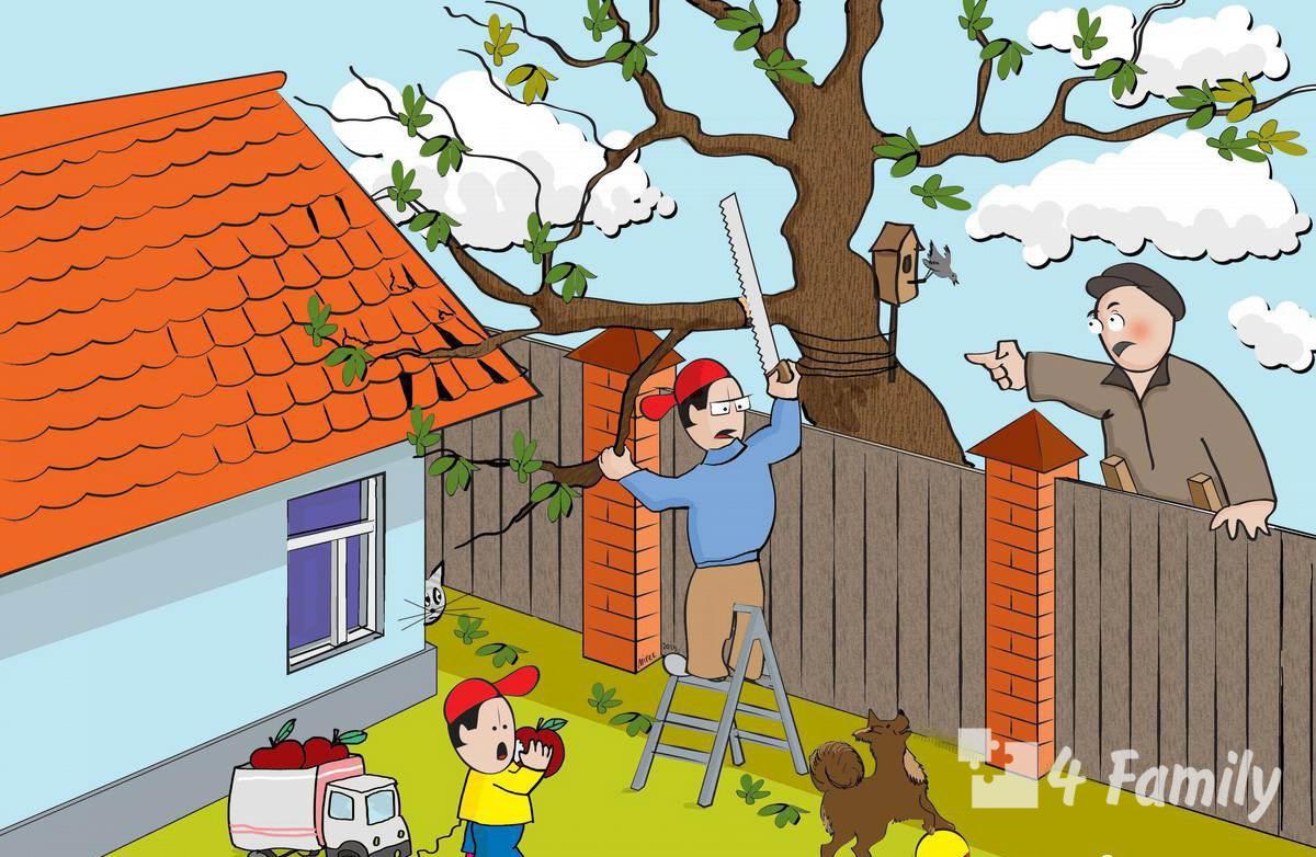 4family Как решать конфликт с соседом по даче