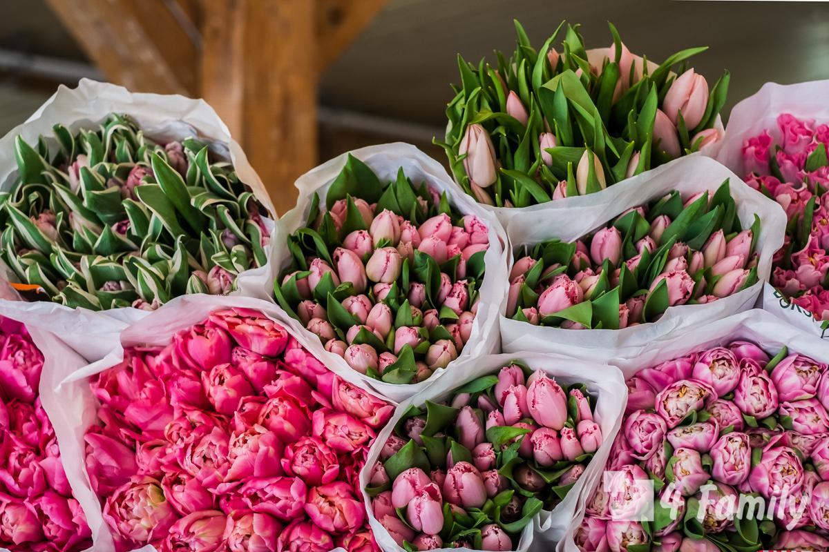 4family Цветочный рынок Блуменмаркт в Амстердаме