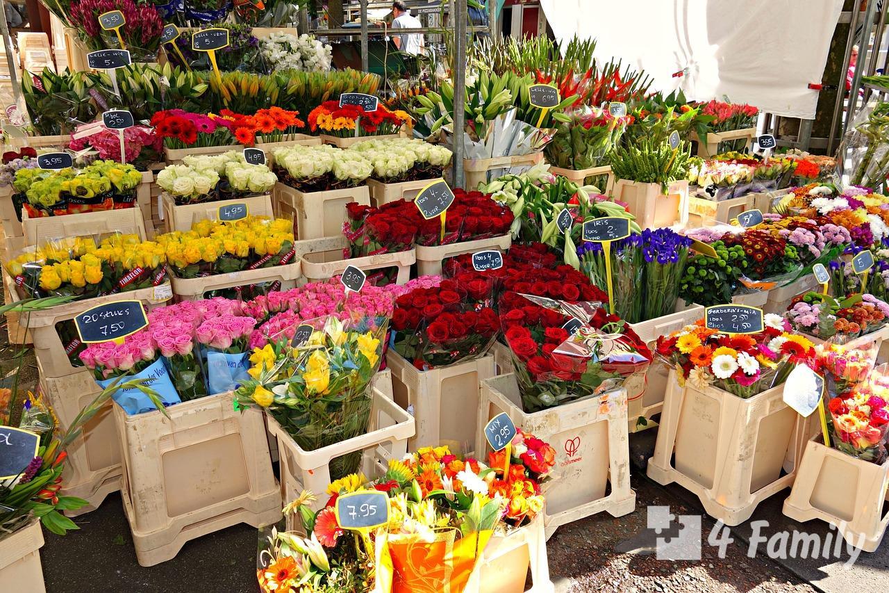 Цветочный рынок Блуменмаркт в Амстердаме